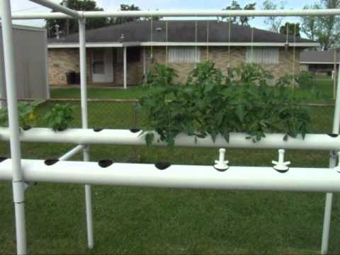 DIY Backyard Hydroponics System Made From PVC Pipe | Do It ...